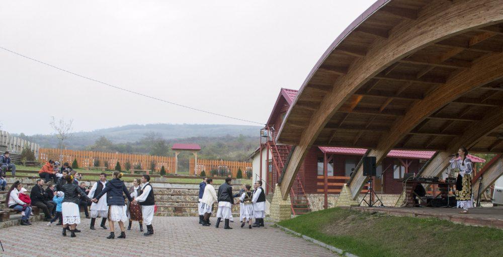 Stana Stepanescu